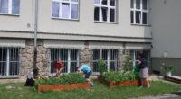 V letošním roce jsme od Olomouckého kraje získali příspěvek 15 000 korun na realizaci aktivit ekologické výchovy v projektu Trvale a udržitelně pro všechny. Olomoucký kraj podpořil naši školu v […]