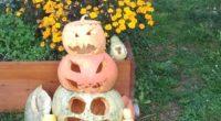 Ke krásné hodině, kterou nám naše americká lektorka Bethany připravila na téma Halloween, jsme se naladili i v hodinách předcházejících a zkusili si pumpkin carving. A dozvěděli se, […]